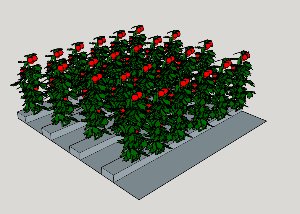 "The 12 inch narrow row allows four planting rows. Each row can fit six to seven plants per row at 24"" spacing. At most, the narrow row design will permit 28 plants.  One could possibly fit an extra row on the end with a path, but for argument sake let's assume there is a fence there and it is inaccessible."